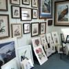 Virginia Beach Black Dog Gallery